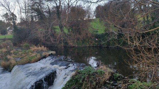 Dublin - Milltown Park