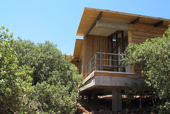 Pictures of Ajloun Cabins - Ajlun Photos