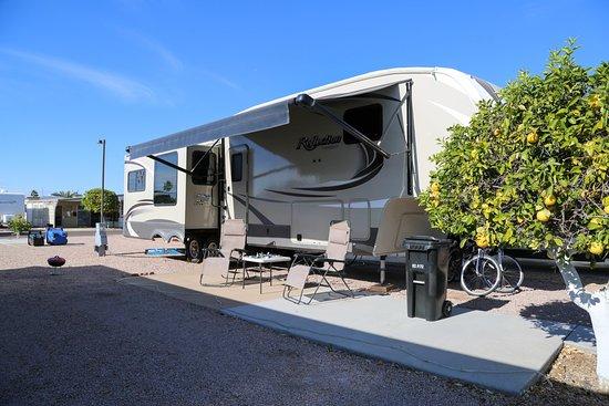 Mesa Regal RV Resort: Our campsite