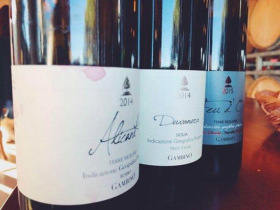 Linguaglossa, Italia: Wine tasting