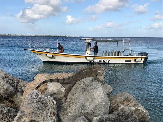 Dive Friends Bonaire Dive Boat
