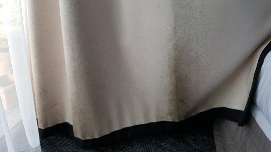 Base Rotorua: Mould on curtain backs