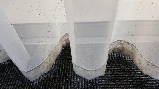 Base Rotorua: Mould on net curtains