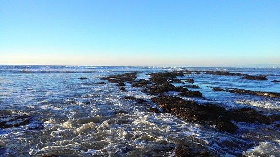 Moss Beach, Californien: tide pools