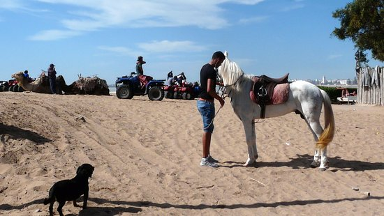 Essaouira Beach: en quad