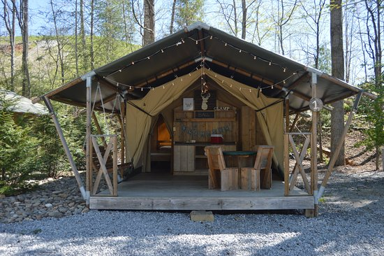 Camp LeConte Luxury Outdoor Resort : Safari Tent