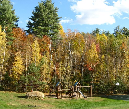Intervale, Nueva Hampshire: Children's Playground and 1/2 Basketball Court