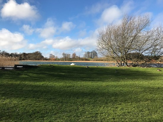 Coldstream, UK: photo1.jpg