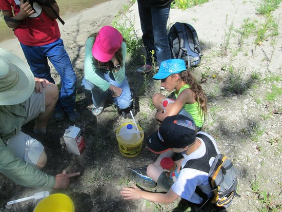 Dubois, WY: Children's Wildlife program