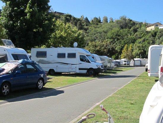 Kaiteriteri Beach Motor Camp: Inside the campground