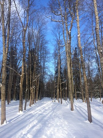 Lomonosov, รัสเซีย: Сказочно красивый Ораниенбаум