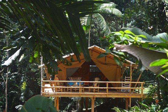 Isla Popa, Panama/Panamá: Tente lodge safari