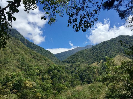 Chirripo National Park, Costa Rica: Photos along the trail :)