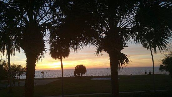 Ράσκιν, Φλόριντα: 20170301_183351_large.jpg
