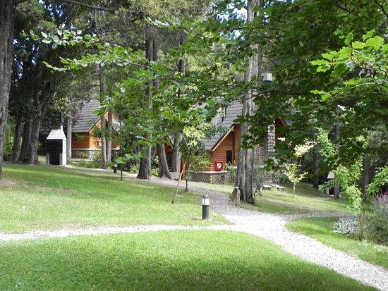 Bosque Dormido Cabanas & Spa Picture