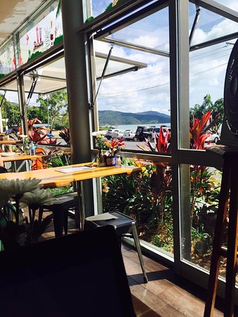 Cannonvale, Australia: View from my 'desk' at the Fat Frog
