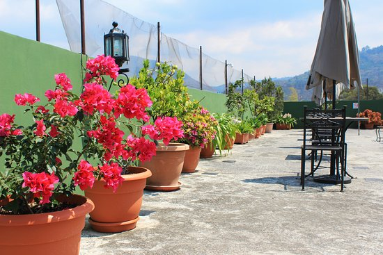 Hotel Posada San Vicente: Terraza