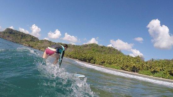 High tide surf school
