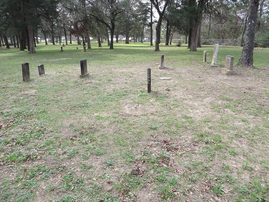 Mexia, TX: Springfield Cemetery
