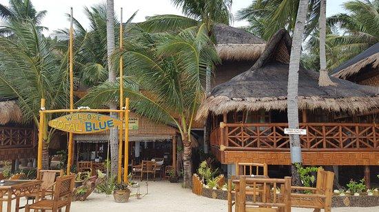 The Coral Blue Oriental Beach Villas & Suites: 20170308_094448_large.jpg