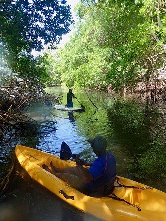 Canaan, Tobago: photo0.jpg