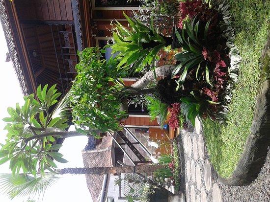 Gilimanuk, Indonésie : Garden view