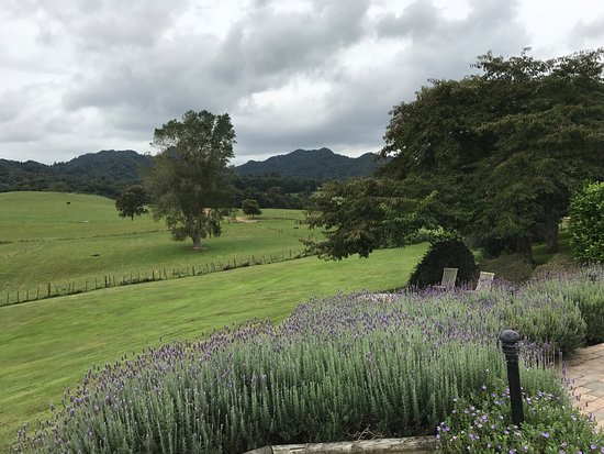 Pukeatua, New Zealand: photo8.jpg