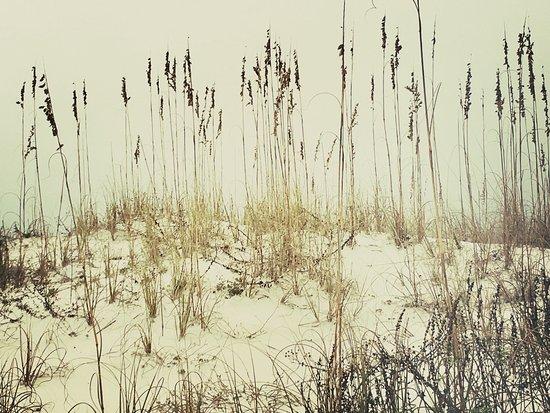 Gulf Islands National Seashore - Florida District: photo3.jpg