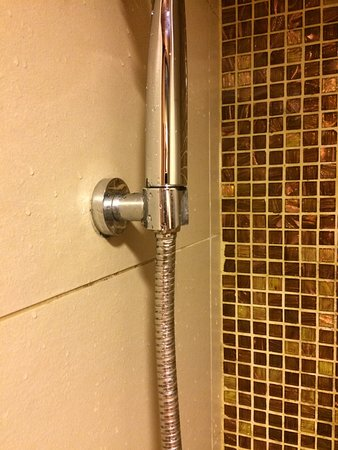 Bracket for shower head is not adjustable - Picture of Best Western ...