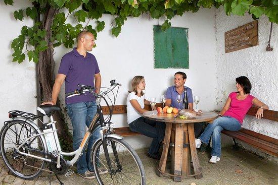 Mit dem E-Bike geht's entspannt zu den Buschenschanken der Umgebung...