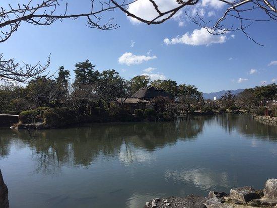 Kono Park