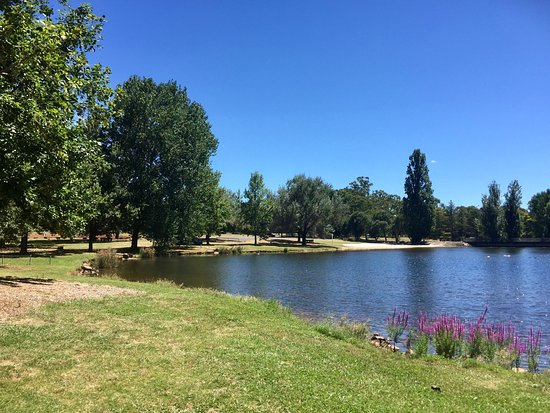 Lake Canobolas: Stunning lake good for family picnic  and just relax  and they also have a  cafe  to enjoy coffe