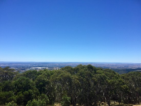 Mount Canobolas State Conservation Area