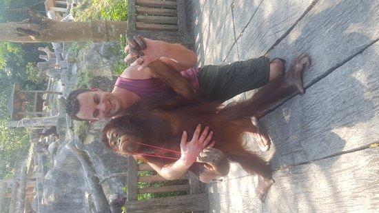 Khao Kheow Open Zoo: 20170218_142030_large.jpg