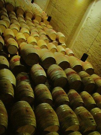 Constantia, Sydafrika: Wine Tour