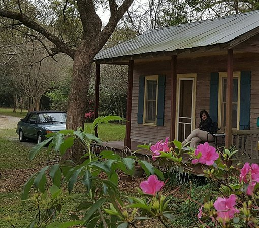 Bayou Teche Guest Cottage: lazy spring evening