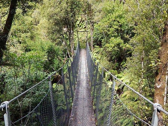 Woods Creek Track