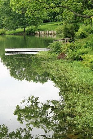 Little Buffalo State Park: Peaceful docks for sitting on the edge with your toes touching the water!