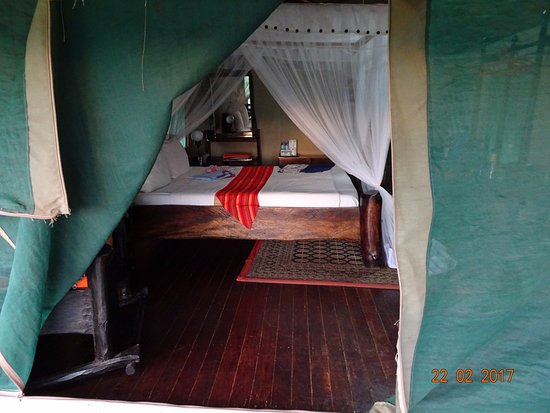 Manyara Wildlife Safari Camp: Letto con zanzariera