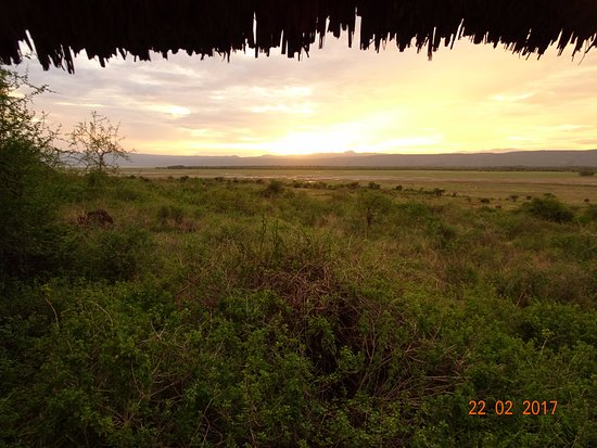 Manyara Wildlife Safari Camp: Tramonto dalla veranda