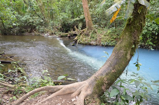 Tenorio Volcano National Park, Costa Rica: Where the clear water river turns blue