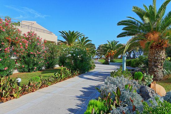 Landscape - Picture of Santa Marina Beach Resort & Spa, Crete - Tripadvisor