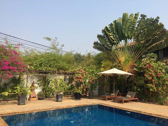 Bambu Battambang Hotel: pool