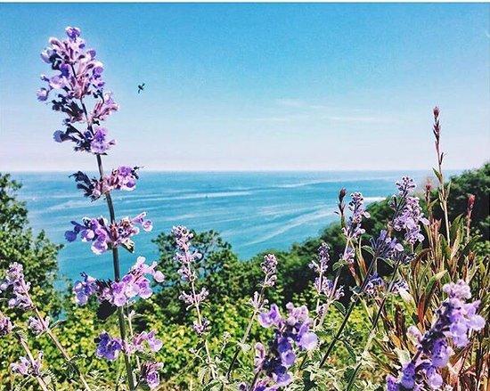 Gabicce Mare, Italy: Lo Spettacolo della Natura