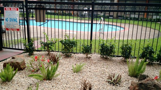 Pasadena, TX: Well kept landscape in front of the pool