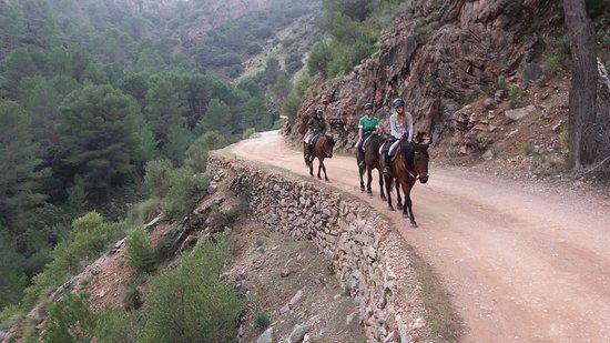 El Burgo, Spain: Randonnée avec des chevaux gentils et de sublimes paysages mon meilleur souvenir