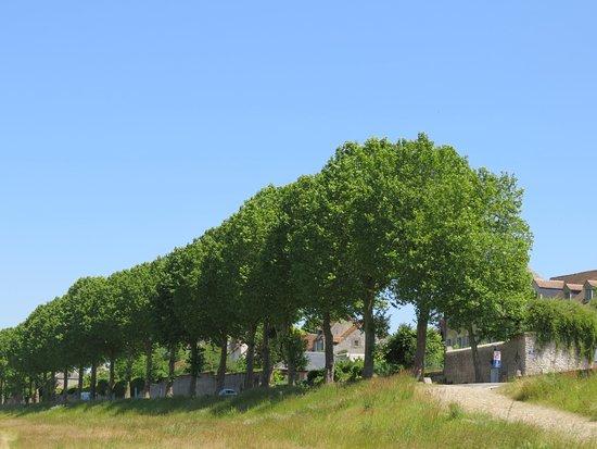 Saint-Dye-sur-Loire, Франция: St Dyé sur Loire, Loir-et-Cher France