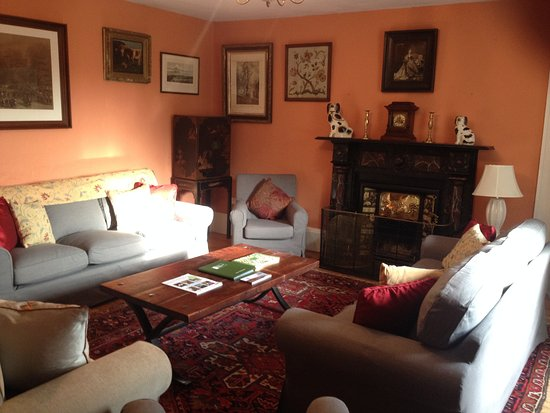 Freshford, Ирландия: Clomantagh Castle Living Room