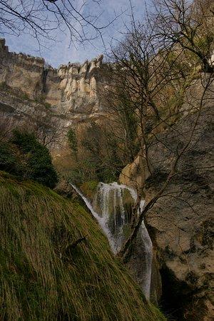 Nacedero del Urederra: Pared vertical de donde surge la cascada final del Necedero del Urederra