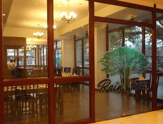 Raintree Multi Cuisine Restaurant: View from the Lobby